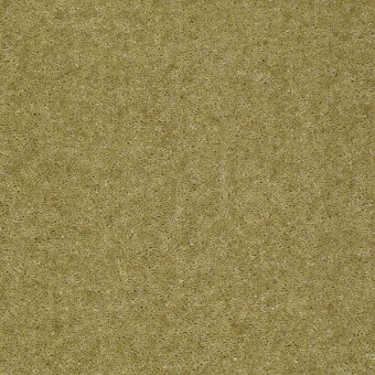 Footwork - Aloe From Shaw Carpet
