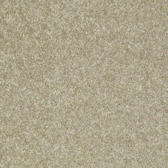 Victory - Adonis From Shaw Carpet