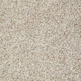 Tuscanet - Winter White From Shaw Carpet