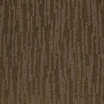 Truly Stunning Philadelphia Carpet Shaw Floors Save