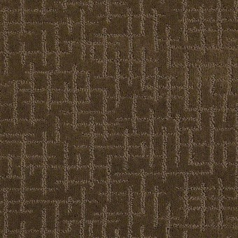 Simply Beautiful - Acorn From Shaw Carpet