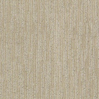Very Attractive - Authentic Ivory From Shaw Carpet