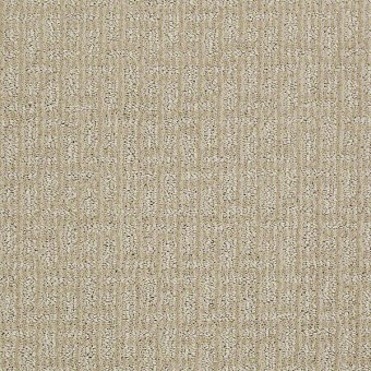 Breathtaking - Authentic Ivory From Shaw Carpet
