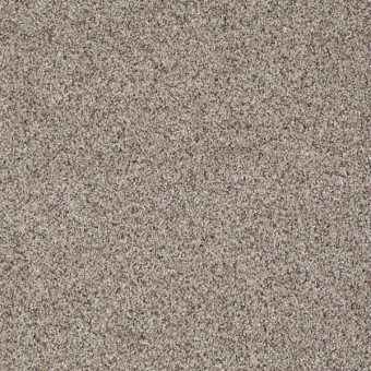 Like No Other III - Cobblestone From Shaw Carpet