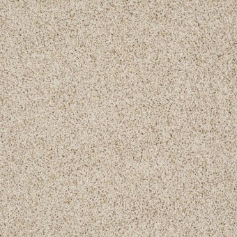 Truly Relaxed III - French Linen From Shaw Carpet