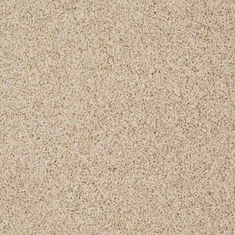Truly Relaxed III - Mesa From Shaw Carpet