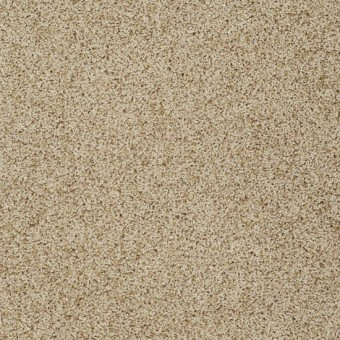 Truly Relaxed III - Taffeta From Shaw Carpet