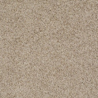 Truly Relaxed III - Clay Stone From Shaw Carpet