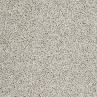 Truly Relaxed III - Textured Canvas From Shaw Carpet