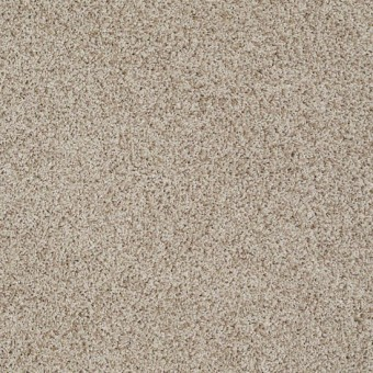 Truly Relaxed III - Latte From Shaw Carpet