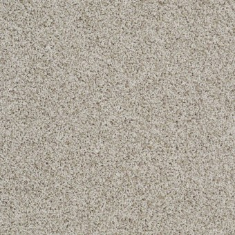 Truly Relaxed III - Natural From Shaw Carpet