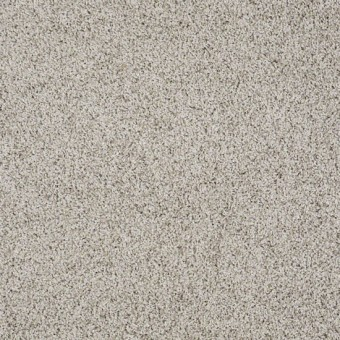 Truly Relaxed III - Glaze From Shaw Carpet