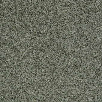 Truly Relaxed III - Bay Laurel From Shaw Carpet