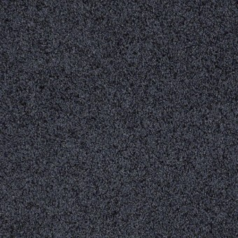 Truly Relaxed III - Indigo From Shaw Carpet