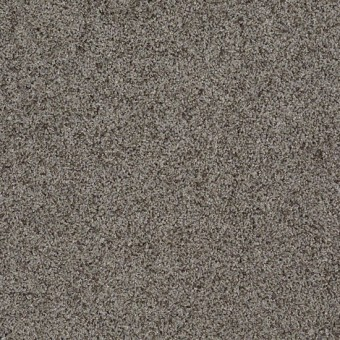 Truly Relaxed III - Grey Flannel From Shaw Carpet