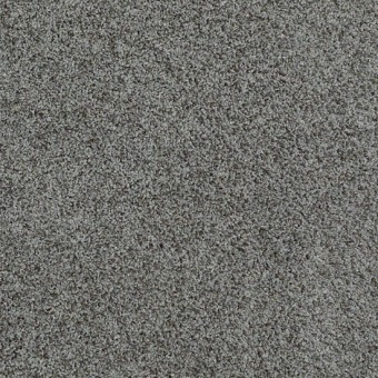 Truly Relaxed III - Charcoal From Shaw Carpet