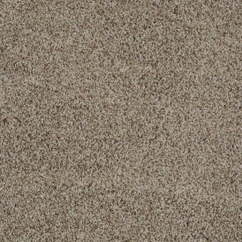Truly Relaxed III - Smooth Slate From Shaw Carpet