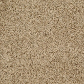 Truly Relaxed III - Honey Pot From Shaw Carpet