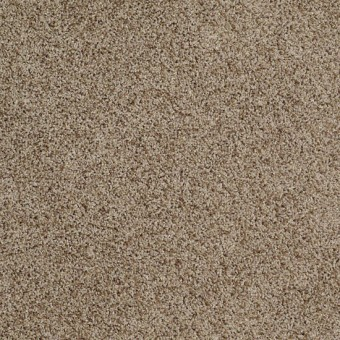 Truly Relaxed III - Vintage Leather From Shaw Carpet