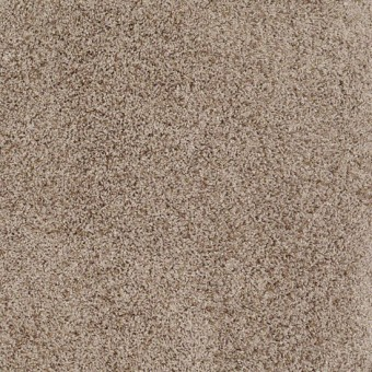 Truly Relaxed III - Cappucino From Shaw Carpet