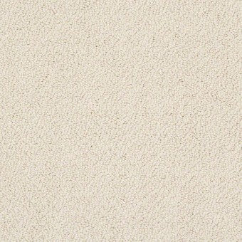 Truly Relaxed Loop - Candlewick Glow From Shaw Carpet