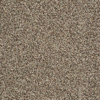 Inspire Me (B) - Acorn From Shaw Carpet