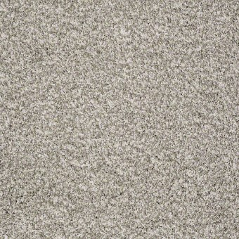 Remember Me (T) - Clam Shell From Shaw Carpet