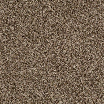 Impress Me II - Cloud Cover From Shaw Carpet