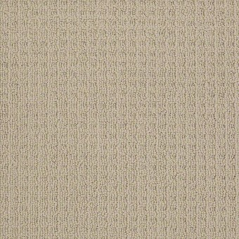 Style Me - Bermuda Sand From Shaw Carpet