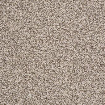 Admire Me - Bermuda Beige From Shaw Carpet