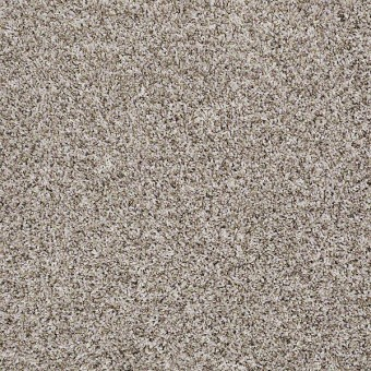 Inspire Me (T) - Bran Flakes From Shaw Carpet