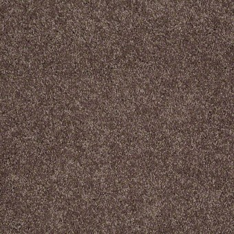 Remember Me (S) - Boysenberry From Shaw Carpet