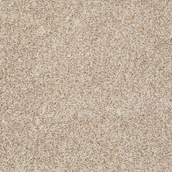 Dazzle Me Texture - Bamboo From Shaw Carpet