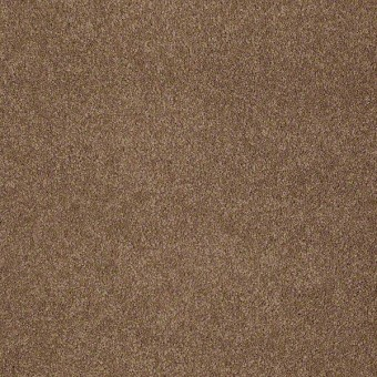 Refined Vision II - Brownie From Shaw Carpet