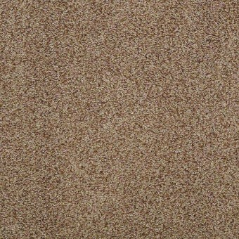 Brilliant I - Barn Wood (T) From Shaw Carpet
