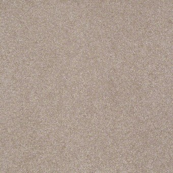 In The Spotlight (S) - Exquisite From Shaw Carpet