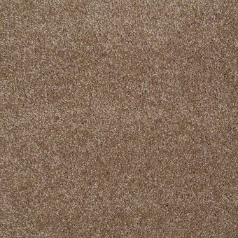 You Know It - Acorn From Shaw Carpet