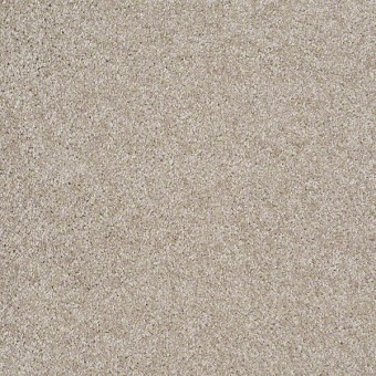Parlay - Abalone From Shaw Carpet