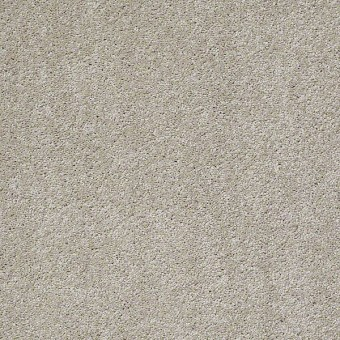 Something Sweet - All Natural From Shaw Carpet
