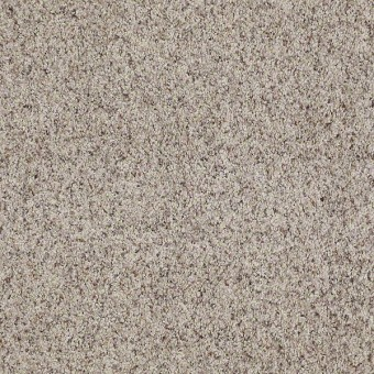 Shaw Carpet Split Second A Bella From