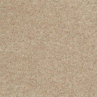 Briceville Classic 12' - Adobe From Shaw Carpet
