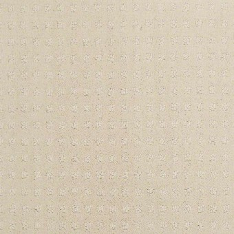 Dashing Appeal - Cameo Glow From Shaw Carpet
