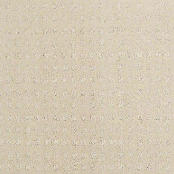 Precise Style - Cameo Glow From Shaw Carpet