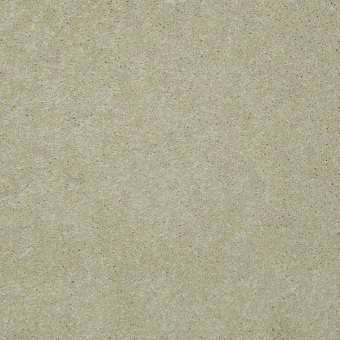 For Pete's Sake - Alabaster From Shaw Carpet