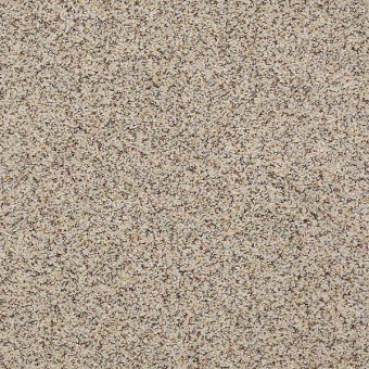 Problem Solver II - Beach House From Shaw Carpet