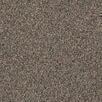 Rhapsody I Shaw Carpet Save 30 50 At Carpet Express