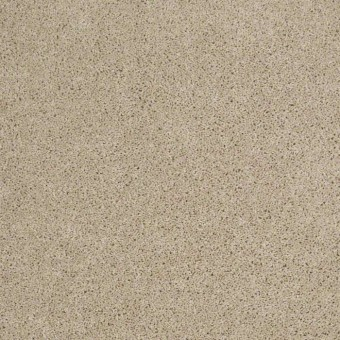 Origins II - Frost From Shaw Carpet