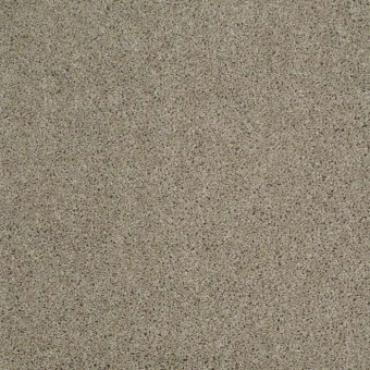 Origins II - Gray Flannel From Shaw Carpet
