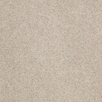 Origins II - Fossil From Shaw Carpet