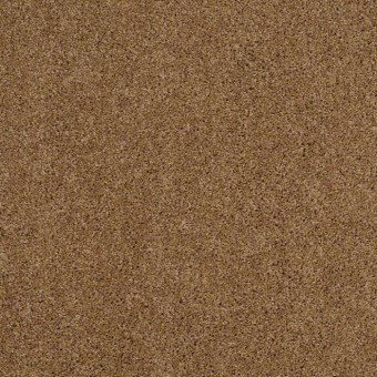 Origins II - Leather Bound From Shaw Carpet